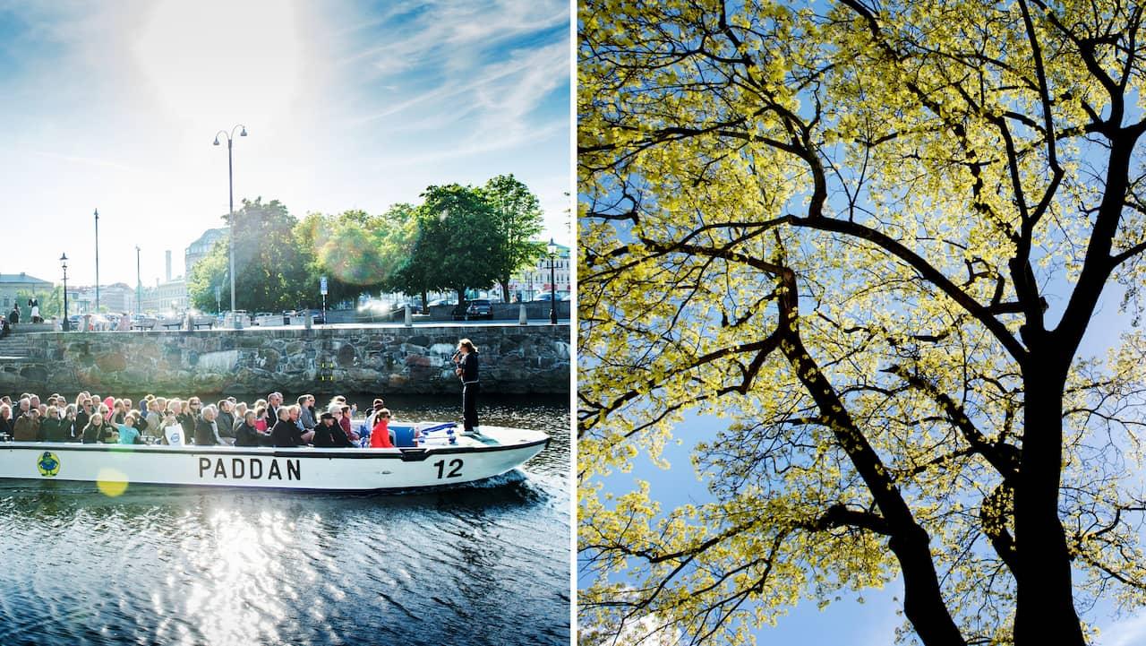 Nu drar vårsolen in: Årets hittills varmaste dag väntas i Västsverige