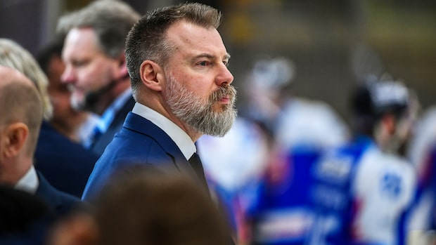 Rikard Grönborg slutar som förbundskapten