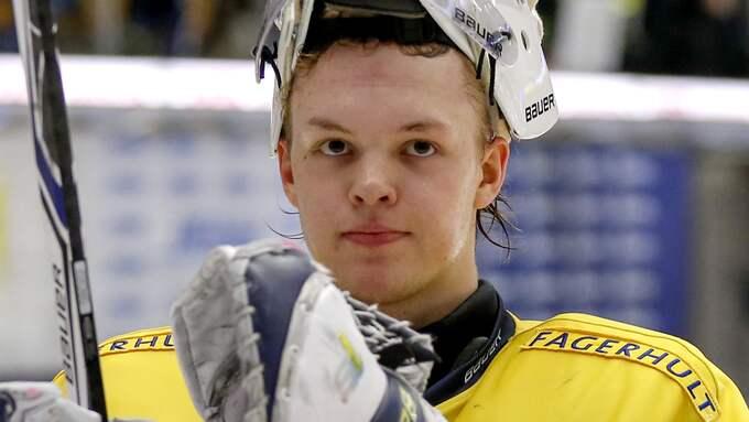 Linus Söderström. Foto: STEFAN PERSSON / BILDBYRÅN