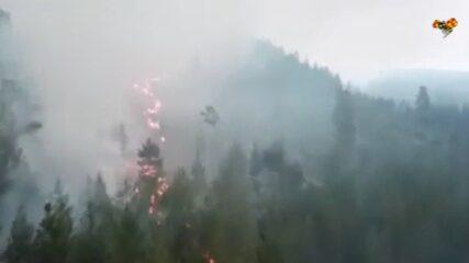 Skogsbränderna: Detta bör du packa vid evakuering