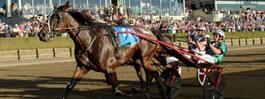 Australisk häst är klar för Elitloppet