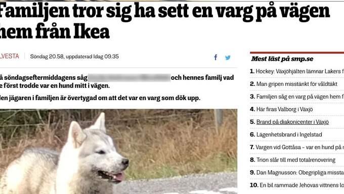 """En skärmdump från Smålandsposten. En jägare hade sett en """"varg"""". Foto: Smålandsposten"""