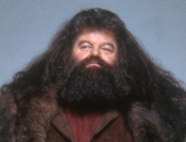 <span>Hagrids megaskägg kanske skyddar mot ond magi också?</span>