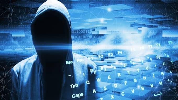 "Som mest ska han med hjälp av viruset ""GameOver ZeuS"" ha kontrollerat uppemot en miljon datorer i flera länder. Foto: Eugene Sergeev / COLOURBOX"