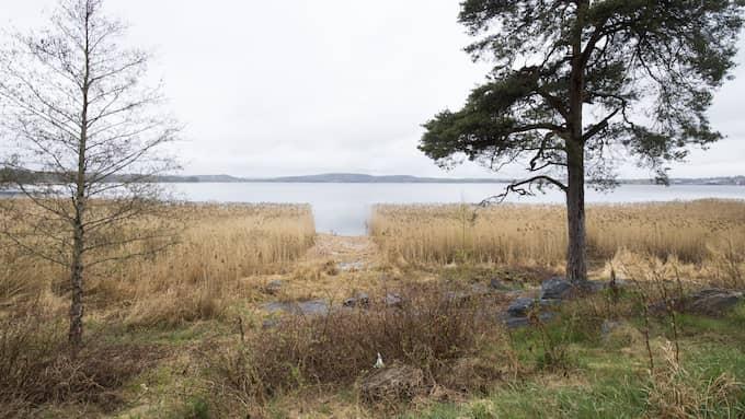 Glafsfjorden i Arvika. Foto: FREDRIK SANDBERG/TT NYHETSBYRÅN