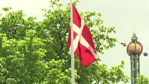 Danskfödd IS-krigare förlorar medborgarskap