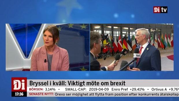 """Madestam om EU-debatten: """"Viktigt att tydliggöra vad valet betyder för Sverige"""""""