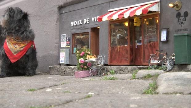 Har det öppnat en restaurang för möss?
