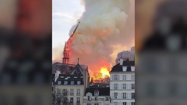 Branden i Notre Dame: Detta har hänt