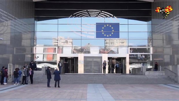 Demoskop: Så tycker svenskarna om EU