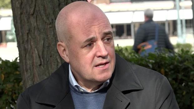 Reinfeldt: Polisen kan inte lösa enklare brott