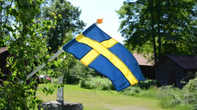 Foto: Gun Persson Ljusne / GUN PERSSON LJUSNE