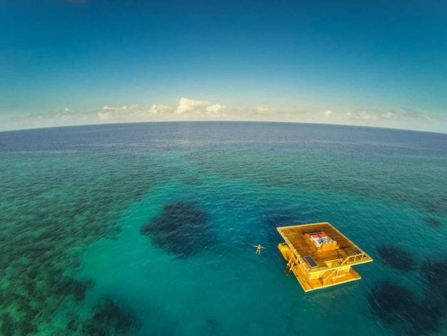 Sov med fiskarna i ditt eget undervattensrum i Indiska oceanen.
