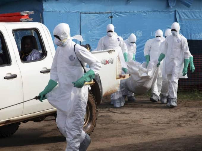 Sedan februari har 1200 människor smittats och fler än 600 dött i Guinea, Sierra Leone och Liberia. Foto: Ahmed Jallanzo / Epa / Tt