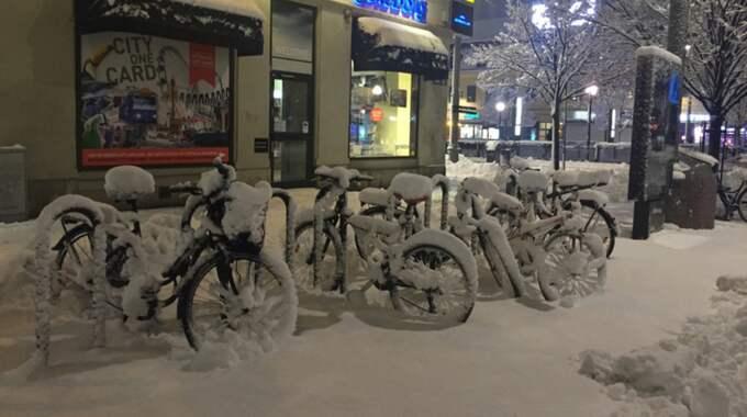 I Göteborg kan det komma upp emot en decimeter snö från tisdagskvällen och ett dygn framåt. Foto: Anette Fredriksson