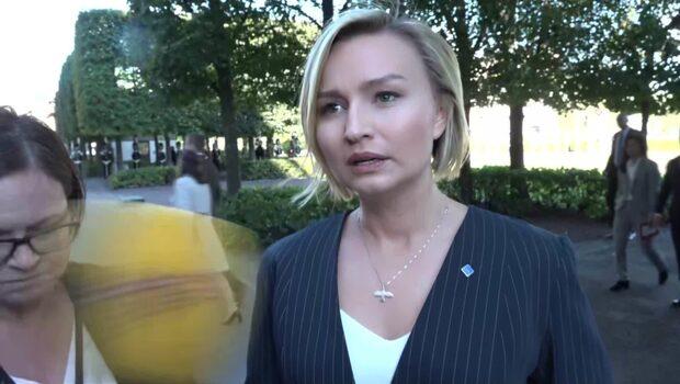 """Busch Thor: """"Löfven klarade inte av att tolka valresultatet"""""""
