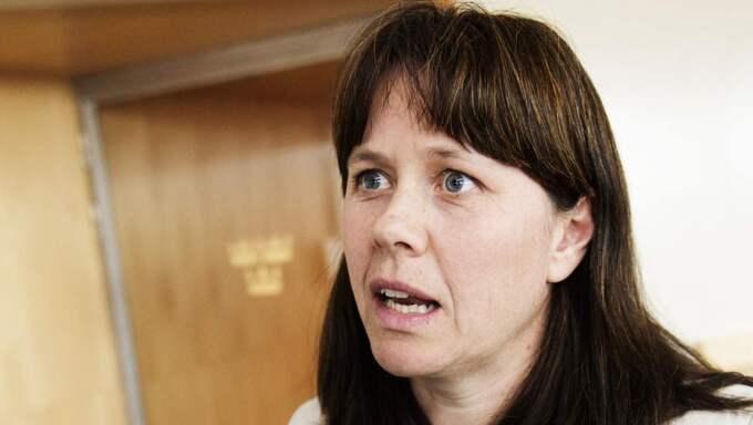 Vice statsminister får hård kritik för en tweet strax efter dåden i Paris. Foto: Anna-Karin Nilsson