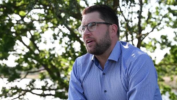 """SD i Sölvesborg vill köpa in mindre """"utmanande"""" samtidskonst"""