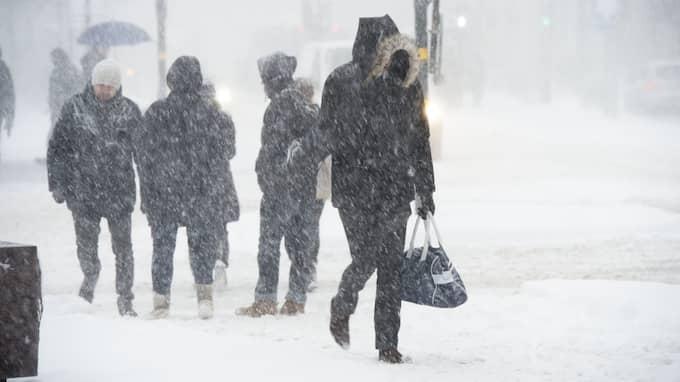 Vintern 2012-13 var enormt snörik – kommande vinter kan bli något liknande. Foto: STEFAN SÖDERSTRÖM