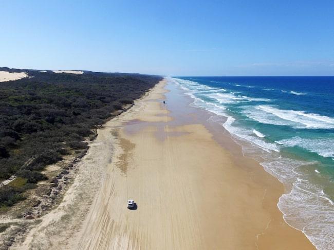 Vattnet utanför Queensland vid Australiens östkust är inte att leka med. Speciellt i området runt ön Fraser Island kryllar det av livsfarliga vattendjur.