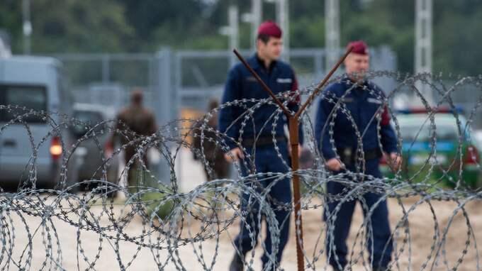 Vakter vid den ungerska gränsen tidigare i år. Foto: SANDOR UJVARI / AP TT NYHETSBYRÅN