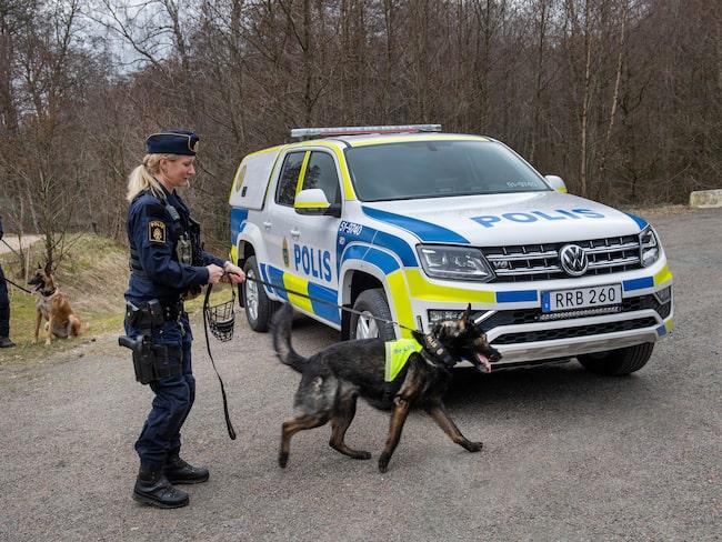 I dem ska såväl hundar som hundförare få en bra arbetsmiljö, och det ska bli enklare att ta sig fram till platser för livräddande uppdrag.