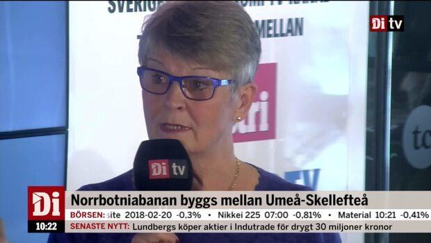 Maud Olofsson: Så får vi tillväxt i norra Sverige