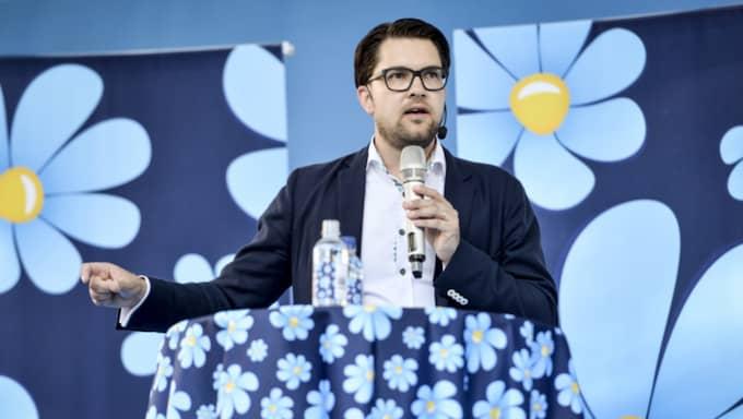 Jimmie Åkesson (SD). Foto: Henrik Montgomery/Tt