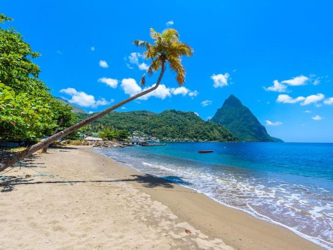 Pitonerna har blivit symbolen för vackra Saint Lucia. I förgrunden charmiga, lilla Soufrière.