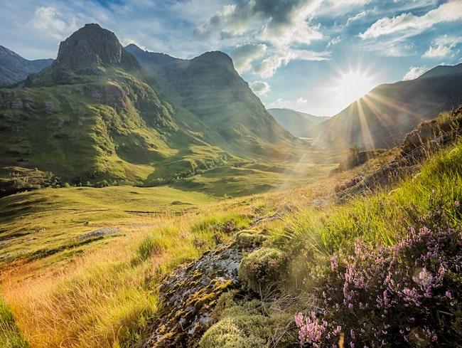 Drömmer du om att springa maraton och dricka whisky i Skottland har du nu chansen att kombinera dessa två.