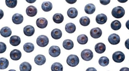 torkade blåbär nyttigt