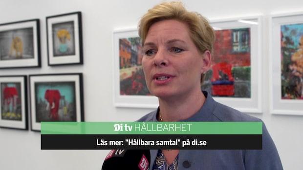 Annica Ånäs: Därför ökade vår energianvändning