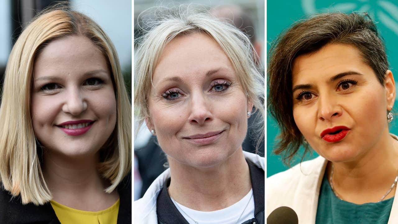 Eu Valet 2019 Resultat Sveriges 20 Nya Eu Parlamentariker