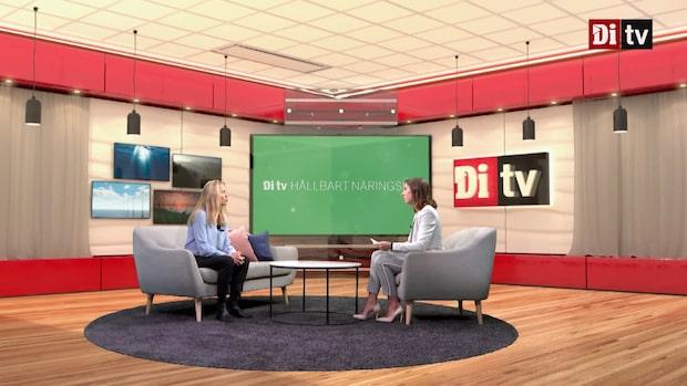 Di TV Hållbart Näringsliv 16 oktober - se hela programmet