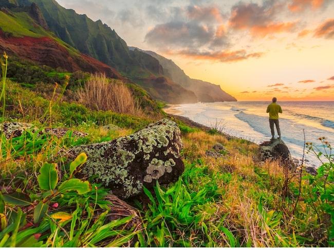 """""""Hawaiianerna är väldigt nära naturen. Tar man bort naturen finns inte Hawaii. Själen finns i bergen, i träden, havet, fåglarna och fiskarna"""" säger Tareq Taylor."""