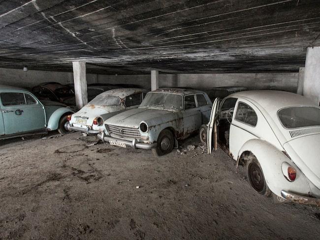 21 bilar, där några samlat damm i nästan 40 år. Nu säljs de nyligen hittade klassikerna på auktion i Kungsängen.