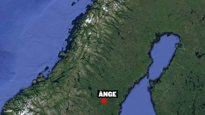 På nyårsnatten skrämdes tolv kor i en hage utanför Ånge.