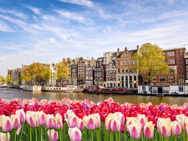 Raketen bland påskens resmål: tulpanernas Amsterdam.