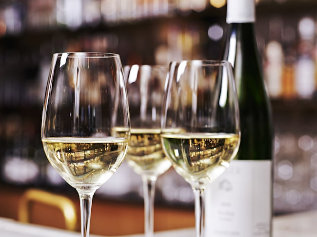 Riesling är en av världens mest älskade vitvinsdruvor och ett uppskattat vinval på bland annat Sturehof i Stockholm.