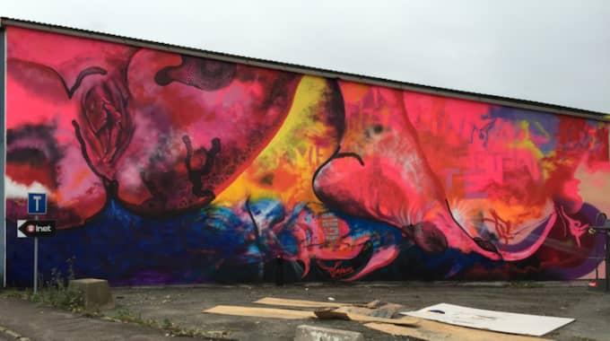Carolina Falkholts muralmålning på Ringön hade inte mer än hunnit färdigställas, innan den vandaliserades. Foto: Carolina Falkholt