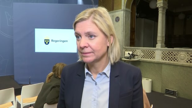 """Magdalena Andersson (S): """"Ska kunna sätta bidragsfuskarna bakom lås och bom"""""""