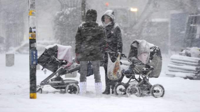Vi har haft en mycket kall januari hittills. Foto: Stefan Söderström