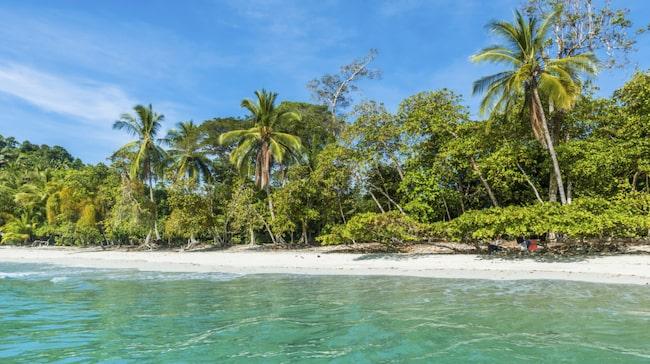 Costa Rica är den mest besökta nationen i Centralamerika - inte minst för sitt stora utbud av hundratals paradisstränder.