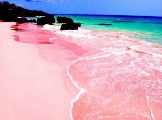 <span>Bada på en rosa strand.</span>