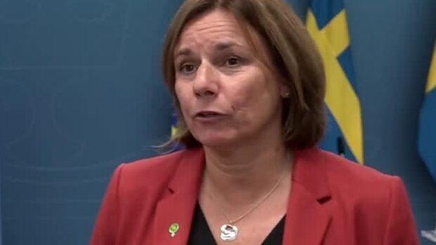"""Lövin (MP): """"Oroad över att vi inte kommer att lösa klimatkrisen"""""""