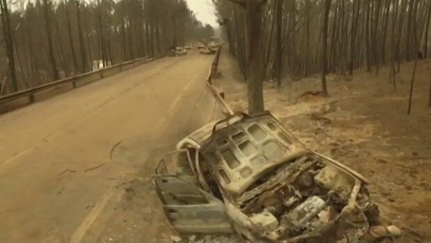 Massiv förödelse efter dödsbrandens framfart i Portugal