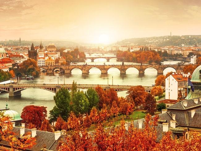 Sommarledigheten är över och växtligheten klär i fantastiska färger om hösten. På bild vackra Prag om hösten.