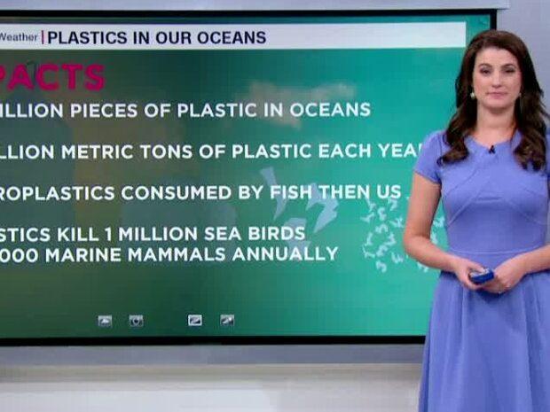 CNN:s meteorolog: Så mycket plast finns i våra hav
