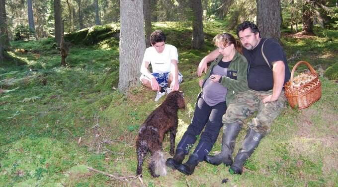 Familjens hund Tyson dödades i vargattacken. Foto: Mikael Aksamit