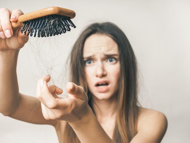 hur många hårstrån tappar man om dagen